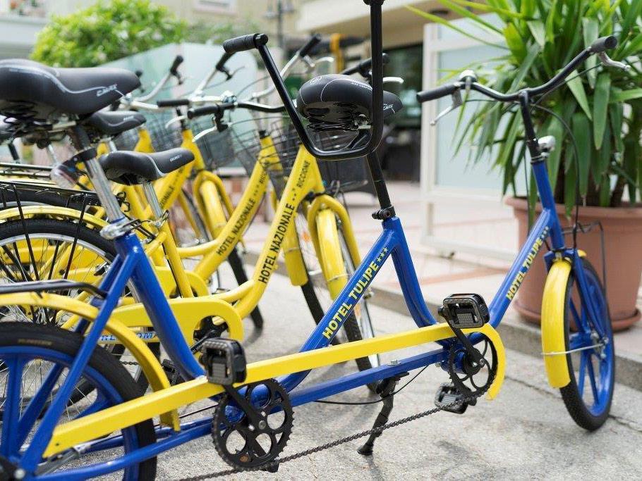 Tulipe Biciclette